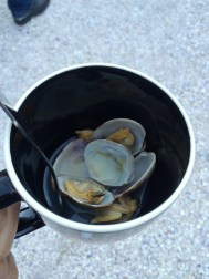 Welcomed w/ fresh clams | Tillicum Island