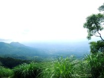 Gudalur View - Gudalur Ooty Ghat Raod