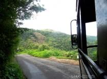 Kattappana - Cheruthoni road..
