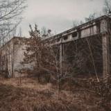 Waldhaus Niemitz (5)