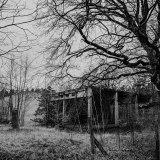 Waldhaus Niemitz (6)
