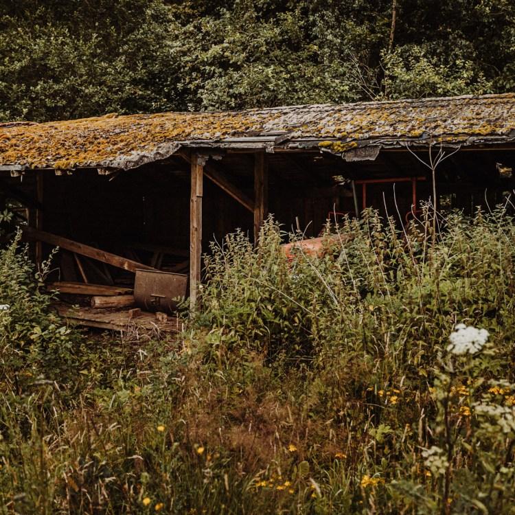 iamlost verlassene orte lostplace lostplaces urbex urban exploring Hessen altes Sägewerk Söhrewald
