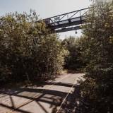 Iamlost-Lostplace-Hessen-Alter-Bahnhof (5 von 193)