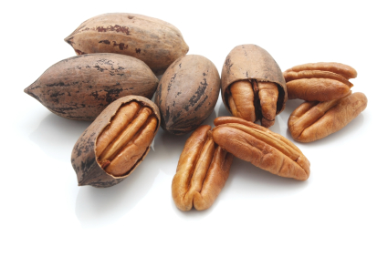 Pecans california pecan growers