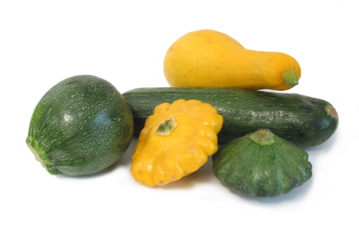 summersquash - food subs