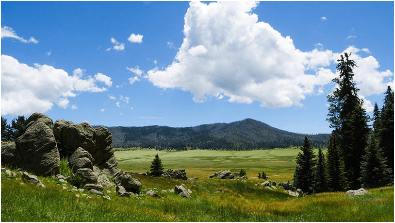 Valles Caldera, New Mexico; Photo: I am New Mexico/Jessica Pacheco-Semenyuk