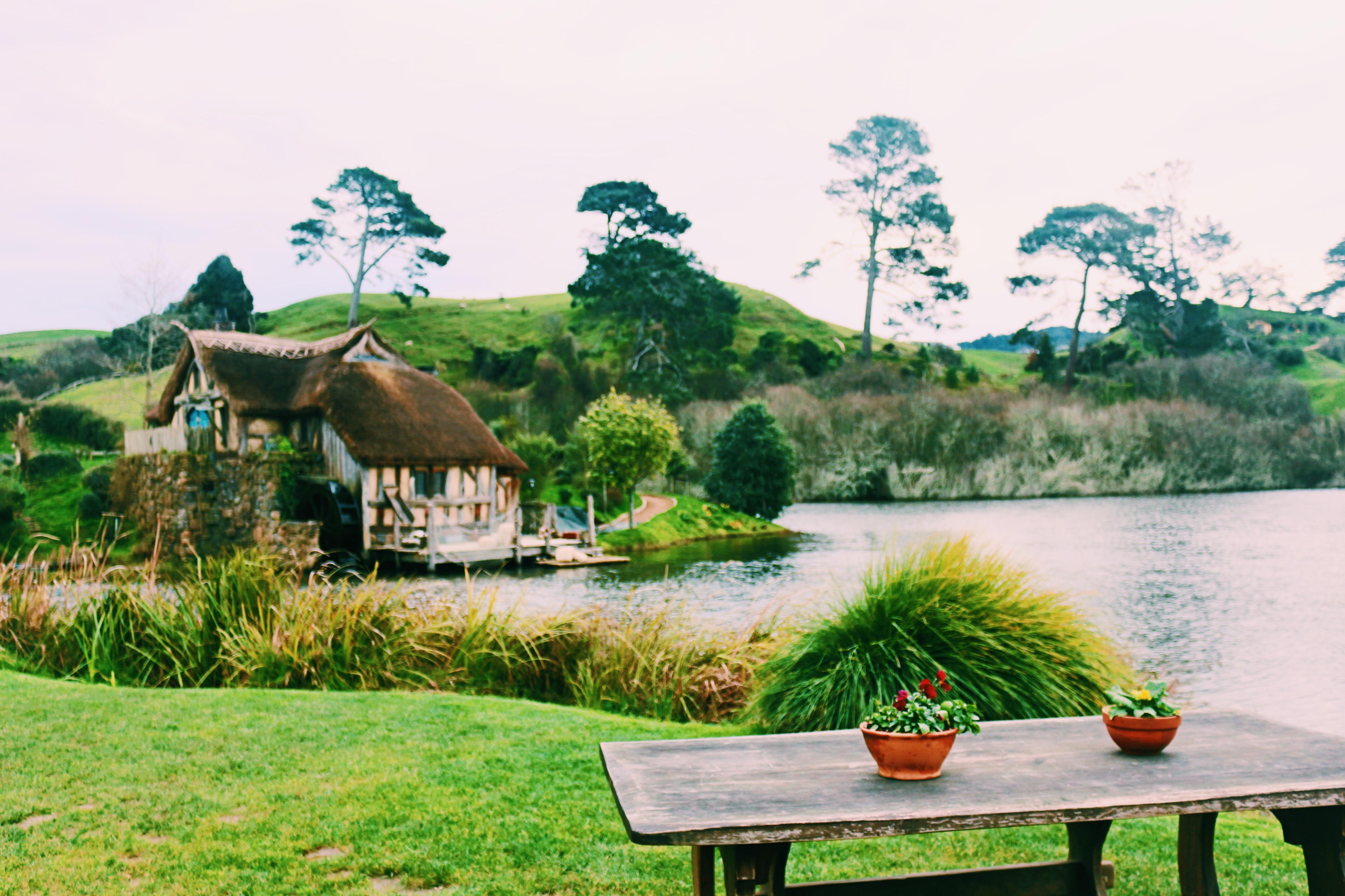 【行程分享】 紐西蘭北島6天自駕遊行程懶人包 – Hi I am Rebecca Leung :)
