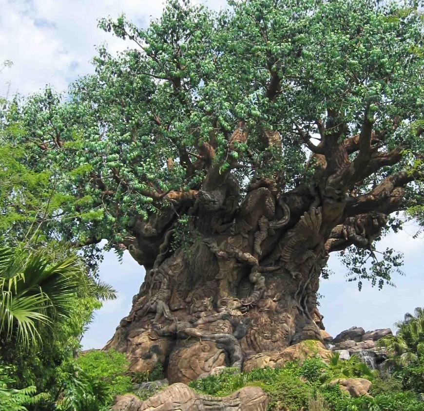 How to plan a trip to disney world - tree of life - http://iamsherrelle.com