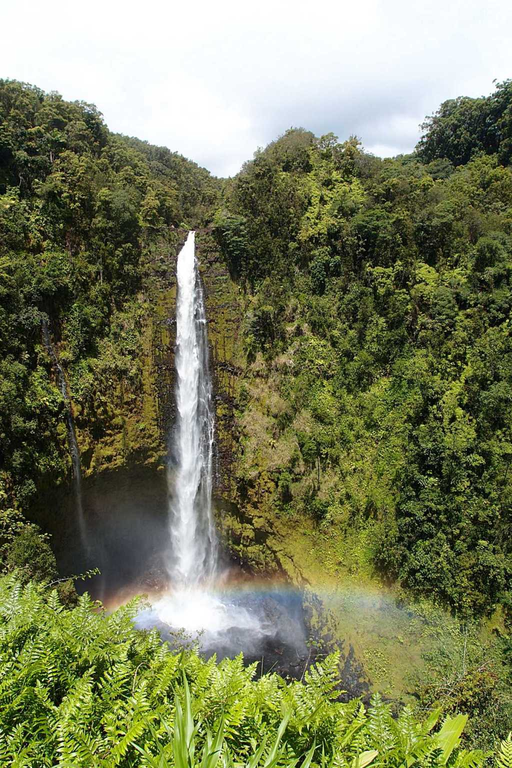 A stop at Akaka Falls is one of the 7 Things You Must Do On The Big Island, Hawaii