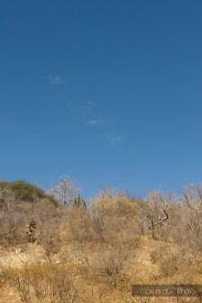 desierto zacatecas méxico