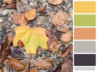colour mosaic palette iamsombra