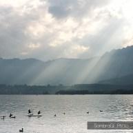 thun lake lago paisaje landscape switzerland iamsombra