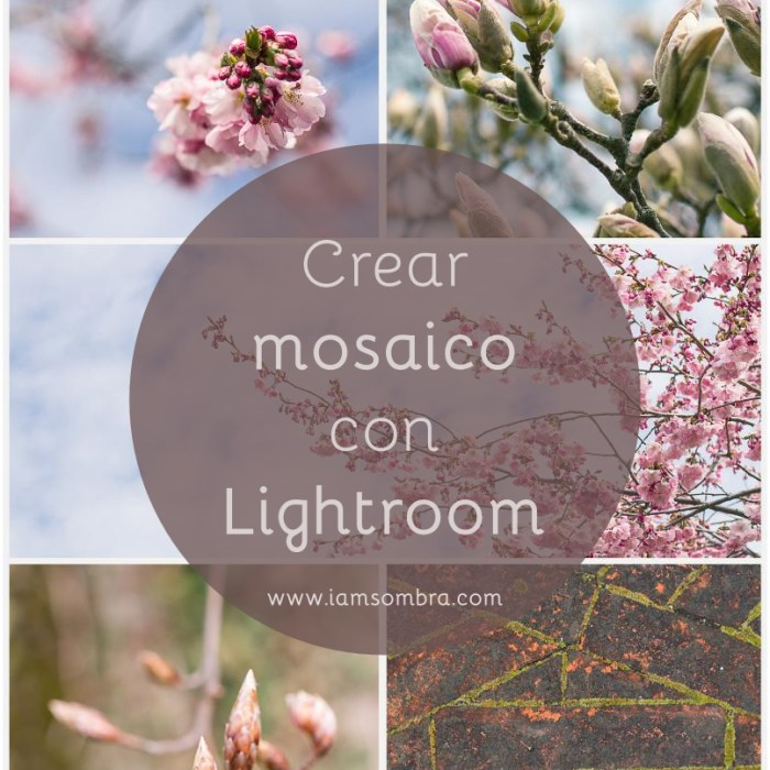 portada tutorial lightroom mosaico