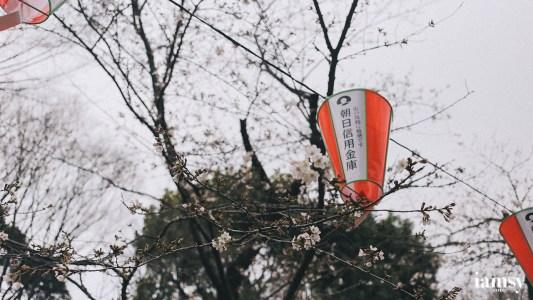 2016-iamsy-mar-tokyo-ueno-park-18