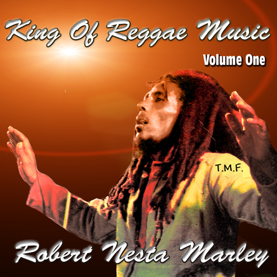King of Reggae Music Vol 1 (Promo Mix)