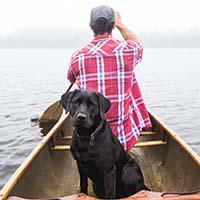 dog-on-a-boat_resize