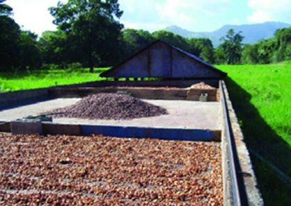 corredera-de-cacao-y-coco