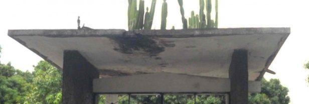 Detalle de las filtraciones del techo de lCementerio El Carmen. Fotos Marinela Araque R.