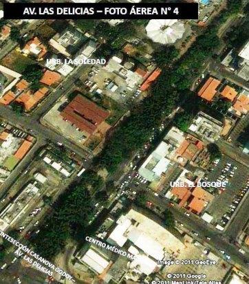 Hay zonas más arboladas que otras en la Av. Las Delicias. Foto Garaldem Maracay.