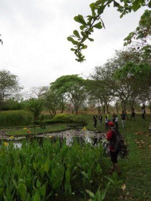 Conciencia y paisaje, ecuación clave para preservación de la biodiversidad.