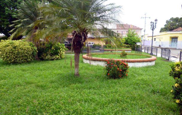 Área de un sano jardín en la plaza. Foto Marinela Araque, 2017.