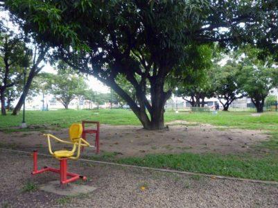 Área abierta del parque Los Mangos, de la ciudad de Barinas. Venezuela.