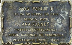 Placa alusiva al araguaney bendecido por el papa Juan Pablo II en la plaza Bolívar de Mérida, patrimonio histórico nacional de Venezuela.