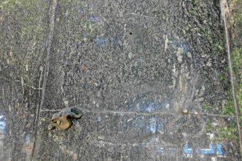 Huella de uno de los escudos hurtados del pedestal del monumento a Simón Bolívar en la plaza Bolívar de San Antonio del Táchira. Patrimonio cultural en riesgo. Venezuela.