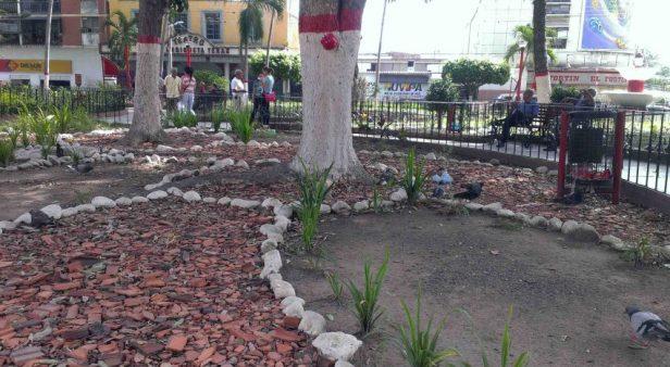Ladrillos picados y piedras blancas sustituyeron la jardinería en la plaza Bolívar de Valera. Activo patrimonial en riesgo. Venezuela.