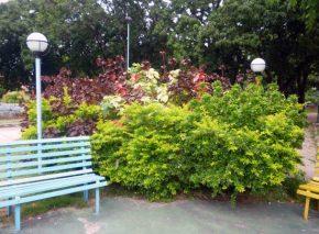 Jardinería en el parque Los Mangos, de la ciudad de Barinas. Bien cultural de Barinas, Venezuela.