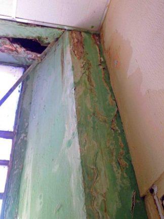 Filtracciones en la pared de la Oficina del archivo del Concejo Municipal. Patrimonio histórico de Barinas en riesgo. Venezuela.