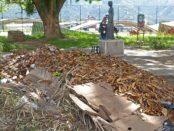 Parque de las Madres de Mérida. Entre vándalos y la desidia oficia. Patrimonio en peligro de Venezuela.