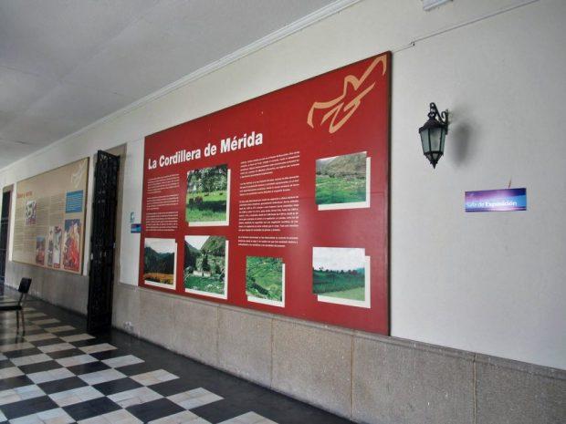 Museo Arqueológico de Mérida. Patrimonio arqueológico de Venezuela en peligro.