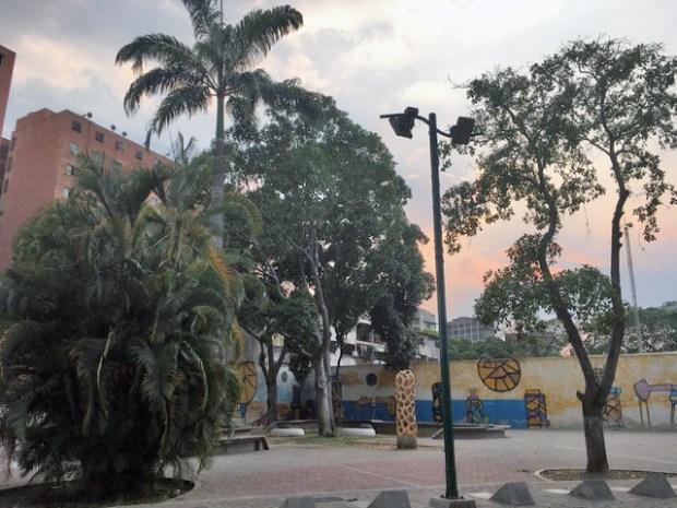 El Bosque Urbano El Porvenir fue intervenido en 2012 por PDVSA La Estancia, pero hoy no recibe mantenimiento. Foto Armando Báez, abril 2019.