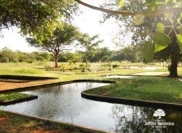 Se rehabilitó el 20 % del JBM. Foto Fundación Jardín Botánico de Maracaibo.