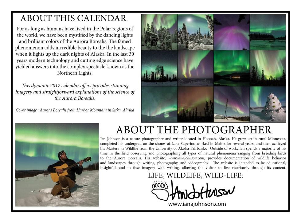 2017-calendar-draft-9halfx1326