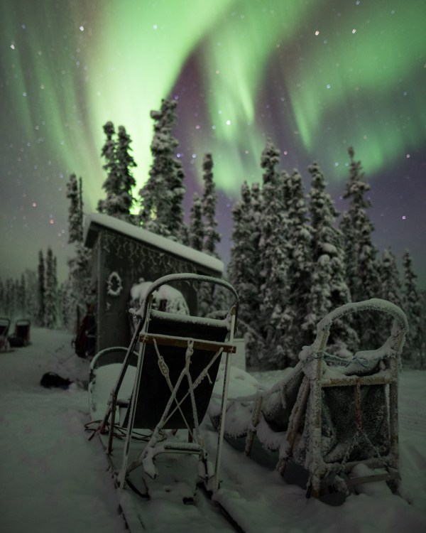Aurora, Sled, Print, Sale, Fairbanks