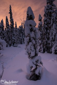 A brilliant sunrise in a winter wonderland in Fairbanks, Alaska.