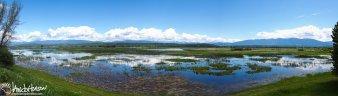 A panorama of the critical wetlands that Kootenai NWR preserves.