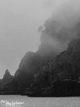 Rolling fog on the way to the Chiswell Islands outside of Seward, Alaska.