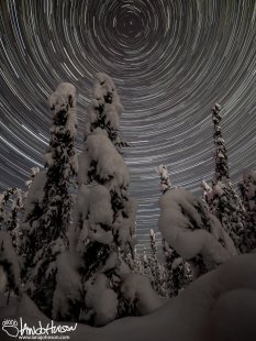 A long star-trail captures the winter wonderland in Fairbanks, Alaska and the north star.
