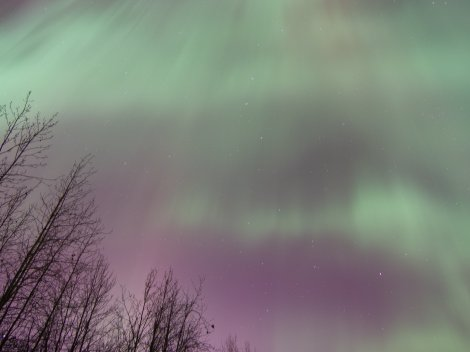 Looking Straight up at the Aurora over the Tanana River kP 5, 02/28/14
