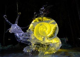 A fairy riding a snail.