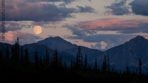 "We were driving down the Dalton Highway when Kassie exclaimed ""STOP!, MOON!"". The ""supermoon"" rising over the mountains was one of the most incredible moonrises we had ever seen!"