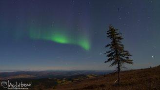 Aurora Blues as dawn approaches