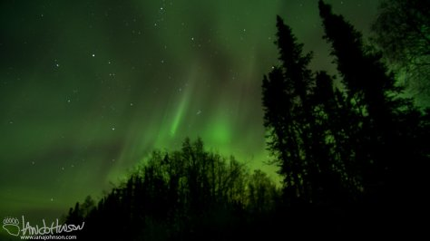 This shot was taken as the aurora started to wind down. However, it still had some color, and was still very active.