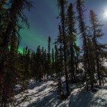 Moon light aurora