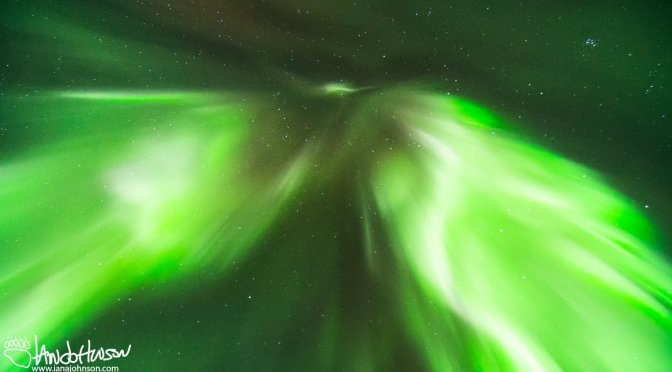 Experiencing the Aurora Borealis in Denali National Park