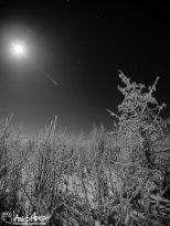 Full Moon 1 Black and White