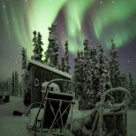 November 19th : Take a Seat for the Aurora